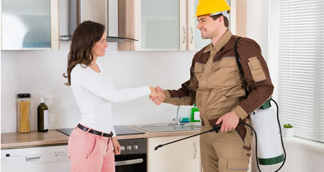 24-7-Emergency-Bed-Bug-Removal-Service