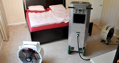 Heat Treatment For Bed Bug Removal & Control in Ontario